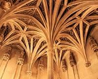an introduction to tracery a characteristic of gothic architcture Gothic architecture was dominant in france and the western half of europe in the   characterized by its window tracery, typically including trefoils and quatrefoils   the period, but ogee and four-centered tudor arches were also introduced.